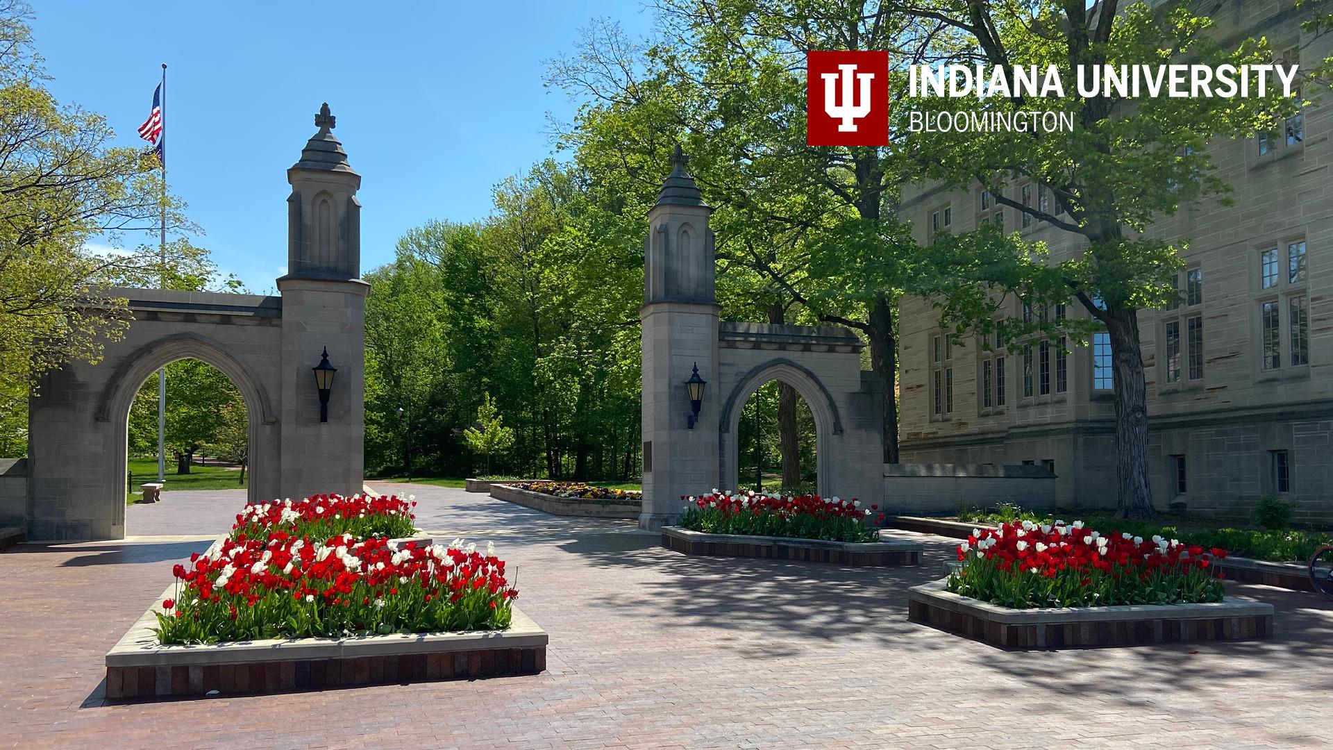 CARBON- Indiana University NetImpact Chapter Partnership - Summer Internship Experience