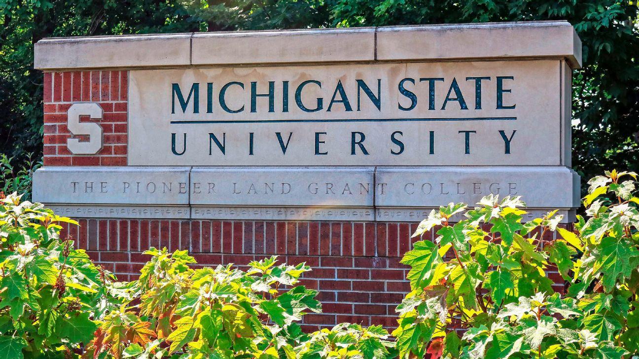 CARBON- Michigan State University NetImpact Chapter Partnership- Summer Internship Experience